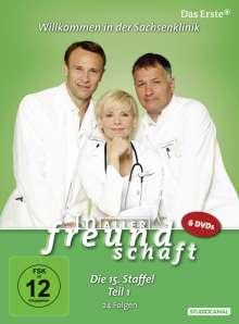 In aller Freundschaft Staffel 15 Box 1, 6 DVDs