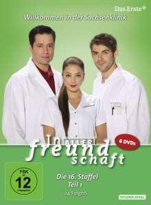 In aller Freundschaft Staffel 16 Box 1, 6 DVDs