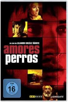 Amores Perros, DVD