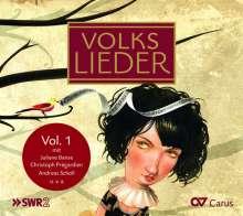 Volkslieder Vol.1 - Exklusive Volksliedersammlung, CD