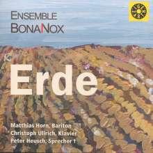 Ensemble BonaNox - Die vier Elemente: IV. Erde, CD