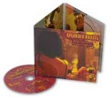 Andy Summers & Victor Biglione: Splendid Brazil, CD