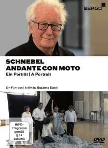 Dieter Schnebel (1930-2018): Schnebel - Andante Con Moto (Dokumentation), DVD