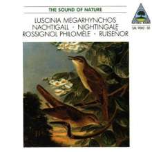 The Sound of Nature - Die Nachtigall, CD