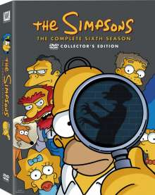 Die Simpsons Season 6, 4 DVDs