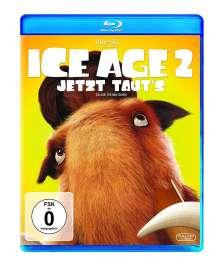 Ice Age 2 - Jetzt taut's (Blu-ray), Blu-ray Disc