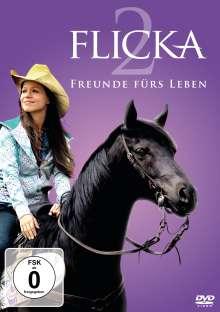 Flicka 2, DVD