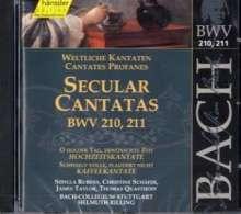Johann Sebastian Bach (1685-1750): Die vollständige Bach-Edition Vol.66 (Kantaten BWV 210 & 211), CD