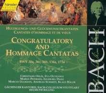 Johann Sebastian Bach (1685-1750): Die vollständige Bach-Edition Vol.139, 2 CDs