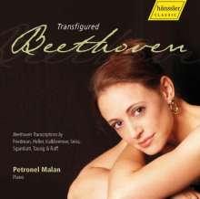 Petronel Malan - Transfigured Beethoven, CD
