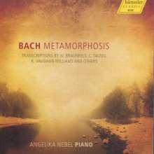 Angelika Nebel - Bach-Transkriptionen, CD