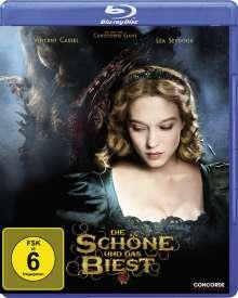 Die Schöne und das Biest (2014) (Blu-ray), Blu-ray Disc