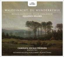 Johannes Brahms (1833-1897): Liebeslieder-Walzer op.52, CD