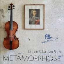 Johann Sebastian Bach (1685-1750): Triosonaten - Rekonstruktionen der vermuteten Urfassungen von BWV 1015,1028,1029,1043, CD