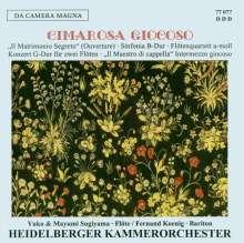Domenico Cimarosa (1749-1801): Sinfonia Concertante für 2 Flöten & Orchester G-dur, CD