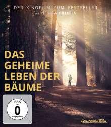 Das geheime Leben der Bäume (Blu-ray), Blu-ray Disc