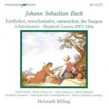 "Johann Sebastian Bach (1685-1750): Kantate BWV 249a ""Schäferkantate"", CD"