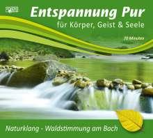 Entspannung pur - Naturklang - Waldstimmung am Bach, CD