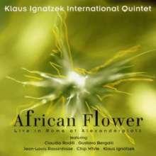 Klaus Ignatzek (geb. 1954): African Flower, CD