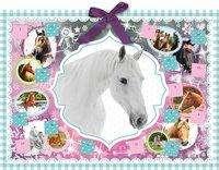 Zauber der Pferde, Diverse