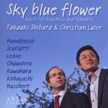 Takaaki Shibata & Christian Laier - Sky blue flower, CD