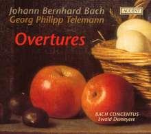 Johann Bernhard Bach (1676-1749): Ouvertüren D-Dur,e-moll,G-Dur,g-moll für Streicher & Bc, 2 CDs