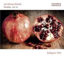 Jan Dismas Zelenka (1679-1745): Sonaten ZWV 181 Nr.1-6 für 2 Oboen & Bc, 2 CDs