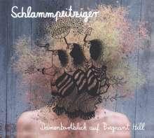 Schlammpeitziger: Damenbartblick auf Pregnant Hill, 1 LP und 1 CD