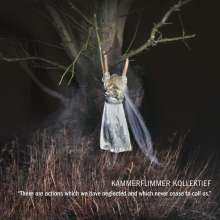 Kammerflimmer Kollektief: There Are Actions Which We Have Neglected And Which Never Cease To Call Us, LP