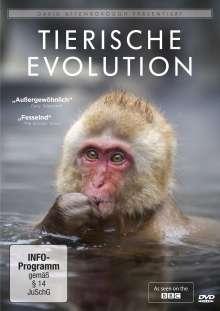 David Attenborough: Tierische Evolution, DVD