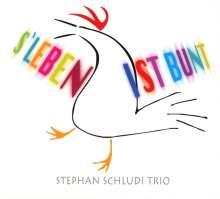 Stephan Schludi Trio: S Leben ist bunt, CD