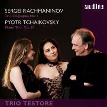 Peter Iljitsch Tschaikowsky (1840-1893): Klaviertrio op.50, Super Audio CD