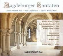 Georg Tegtemeyer (1687-1764): Kantaten, CD