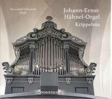 Krzysztof Urbaniak - Johann-Ernst-Hähnel-Orgel Krippehna, CD