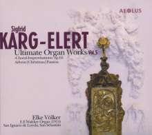 Sigfrid Karg-Elert (1877-1933): Orgelwerke Vol.5, Super Audio CD
