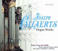 Joseph Callaerts (1838-1901): Orgelwerke, Super Audio CD