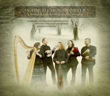 In The Bleak Midwinter - A Musican's Journey From Norway To Spain, CD