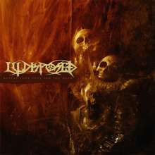 Illdisposed: Reveal Your Soul For The Dead (Limited Edition), LP