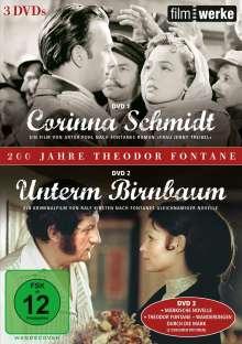 200 Jahre Theodor Fontane: Corinna Schmidt / Unterm Birnbaum, 3 DVDs