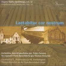 Orgellandschaft Schlesien Vol.12 - Laetabitur cor nostrum, CD