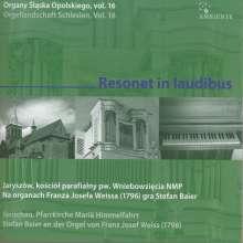 Orgellandschaft Schlesien Vol.16 - Resonet in Laudibus, CD