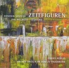 Dominik Susteck (geb. 1977): Zeitfiguren für Orgel solo, Super Audio CD