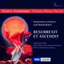 Enjott Schneider (geb. 1950): Geistliche Musik Vol.6, CD