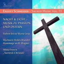 Enjott Schneider (geb. 1950): Geistliche Musik Vol.11, CD