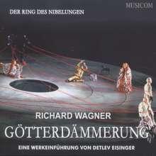Richard Wagner: Götterdämmerung - Eine Werkeinführung, 2 CDs