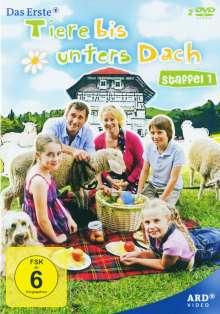 Tiere bis unters Dach Staffel 1, 2 DVDs