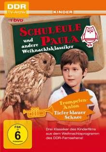 Schuleule Paula und andere Weihnachtsklassiker, DVD