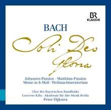 """Johann Sebastian Bach (1685-1750): Die großen geistlichen Werke """"Soli Deo Gloria"""" (ohne Werkeinführungen), 9 CDs"""