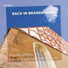 Brandenburgisches Staatsorchester Frankfurt - Bach in Brandenburg, CD