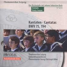 Thomanerchor Leipzig - Das Kirchenjahr mit Bach Vol.8, CD